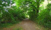 Trail Walk LONGPONT - en forêt de Retz_66_sur la Route Droite - Photo 29