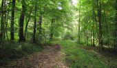 Trail Walk LONGPONT - en forêt de Retz_66_sur la Route Droite - Photo 31