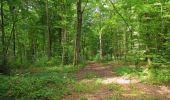 Trail Walk LONGPONT - en forêt de Retz_66_sur la Route Droite - Photo 59