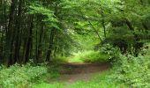 Trail Walk LONGPONT - en forêt de Retz_66_sur la Route Droite - Photo 13
