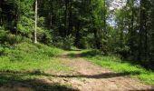Trail Walk LONGPONT - en forêt de Retz_66_sur la Route Droite - Photo 56