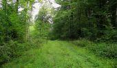 Trail Walk LONGPONT - en forêt de Retz_66_sur la Route Droite - Photo 16