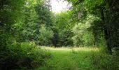 Trail Walk LONGPONT - en forêt de Retz_66_sur la Route Droite - Photo 12