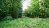 Trail Walk LONGPONT - en forêt de Retz_66_sur la Route Droite - Photo 21