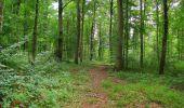 Trail Walk LONGPONT - en forêt de Retz_66_sur la Route Droite - Photo 61