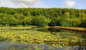 Trail Walk LONGPONT - en forêt de Retz_66_sur la Route Droite - Photo 50