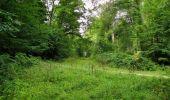 Trail Walk LONGPONT - en forêt de Retz_66_sur la Route Droite - Photo 15