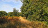 Trail Walk LONGPONT - en forêt de Retz_66_sur la Route Droite - Photo 46