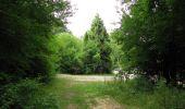 Trail Walk LONGPONT - en forêt de Retz_66_sur la Route Droite - Photo 2