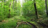 Trail Walk LONGPONT - en forêt de Retz_66_sur la Route Droite - Photo 32