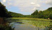 Trail Walk LONGPONT - en forêt de Retz_66_sur la Route Droite - Photo 48