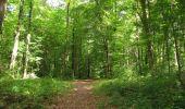 Trail Walk LONGPONT - en forêt de Retz_66_sur la Route Droite - Photo 58