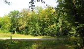Trail Walk LONGPONT - en forêt de Retz_66_sur la Route Droite - Photo 62