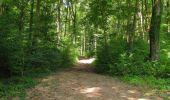 Trail Walk LONGPONT - en forêt de Retz_66_sur la Route Droite - Photo 54