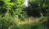 Trail Walk LONGPONT - en forêt de Retz_66_sur la Route Droite - Photo 39