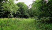 Trail Walk LONGPONT - en forêt de Retz_66_sur la Route Droite - Photo 14