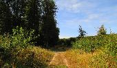 Trail Walk LONGPONT - en forêt de Retz_66_sur la Route Droite - Photo 44