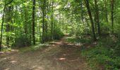 Trail Walk LONGPONT - en forêt de Retz_66_sur la Route Droite - Photo 57