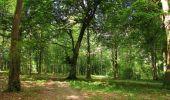 Trail Walk LONGPONT - en forêt de Retz_66_sur la Route Droite - Photo 67