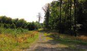 Trail Walk LONGPONT - en forêt de Retz_66_sur la Route Droite - Photo 42