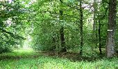 Trail Walk LONGPONT - en forêt de Retz_66_sur la Route Droite - Photo 20