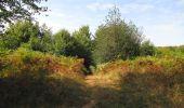 Trail Walk LONGPONT - en forêt de Retz_66_sur la Route Droite - Photo 47