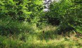 Trail Walk LONGPONT - en forêt de Retz_66_sur la Route Droite - Photo 37