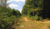 Trail Walk LONGPONT - en forêt de Retz_66_sur la Route Droite - Photo 66