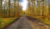 Randonnée Marche LONGPONT - en forêt de Retz_67_ballade (1) en toute saison - Photo 42