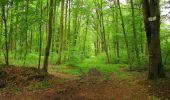Randonnée Marche LONGPONT - en forêt de Retz_67_ballade (1) en toute saison - Photo 19