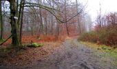 Randonnée Marche LONGPONT - en forêt de Retz_67_ballade (1) en toute saison - Photo 11