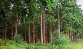 Randonnée Marche LONGPONT - en forêt de Retz_67_ballade (1) en toute saison - Photo 10