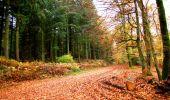 Randonnée Marche LONGPONT - en forêt de Retz_67_ballade (1) en toute saison - Photo 16