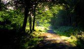 Randonnée Marche LONGPONT - en forêt de Retz_67_ballade (1) en toute saison - Photo 14