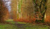 Randonnée Marche LONGPONT - en forêt de Retz_67_ballade (1) en toute saison - Photo 4