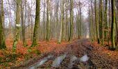 Randonnée Marche LONGPONT - en forêt de Retz_67_ballade (1) en toute saison - Photo 21