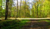 Randonnée Marche LONGPONT - en forêt de Retz_67_ballade (1) en toute saison - Photo 34