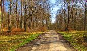 Randonnée Marche LONGPONT - en forêt de Retz_67_ballade (1) en toute saison - Photo 30