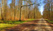 Randonnée Marche LONGPONT - en forêt de Retz_67_ballade (1) en toute saison - Photo 37