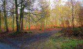 Randonnée Marche LONGPONT - en forêt de Retz_67_ballade (1) en toute saison - Photo 13