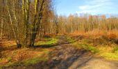 Randonnée Marche LONGPONT - en forêt de Retz_67_ballade (1) en toute saison - Photo 45