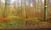 Randonnée Marche LONGPONT - en forêt de Retz_67_ballade (1) en toute saison - Photo 38