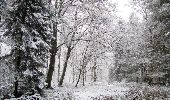 Randonnée Marche LONGPONT - en forêt de Retz_67_ballade (1) en toute saison - Photo 49