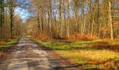 Randonnée Marche LONGPONT - en forêt de Retz_67_ballade (1) en toute saison - Photo 27
