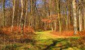 Randonnée Marche LONGPONT - en forêt de Retz_67_ballade (1) en toute saison - Photo 29