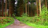 Randonnée Marche LONGPONT - en forêt de Retz_67_ballade (1) en toute saison - Photo 8