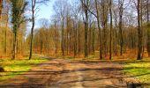 Randonnée Marche LONGPONT - en forêt de Retz_67_ballade (1) en toute saison - Photo 32