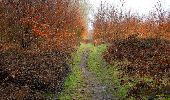 Randonnée Marche LONGPONT - en forêt de Retz_67_ballade (1) en toute saison - Photo 9