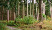 Randonnée Marche LONGPONT - en forêt de Retz_67_ballade (1) en toute saison - Photo 5