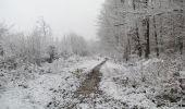 Randonnée Marche LONGPONT - en forêt de Retz_67_ballade (1) en toute saison - Photo 54